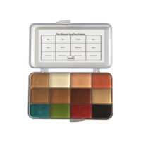 Dashbo Ultimate Face Time Palette 12 colour (alcohol activated)