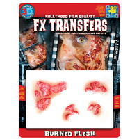 Burned Flesh - Tinsley 3D Fx Transfers