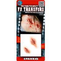 Shanked - TInsley 3D Fx Transfers