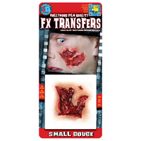 Small Gouge - TInsley 3D Fx Transfers